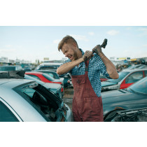 Auto zertrümmern - Gruppe von 1-5 Personen (Downloadgutschein)